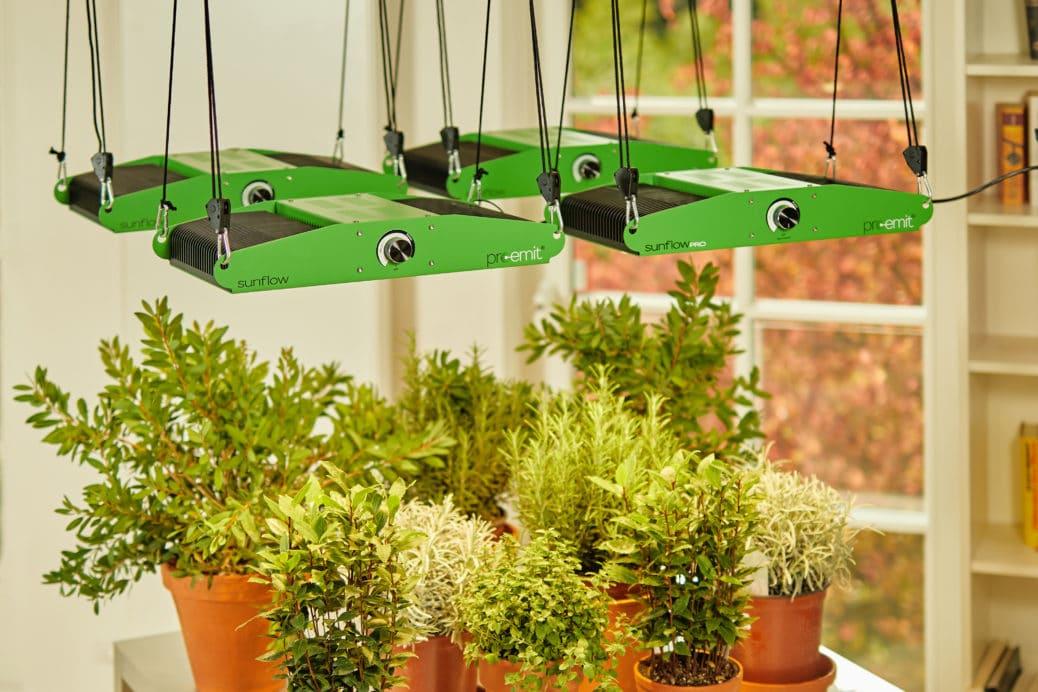 Pflanzenlampen Led Test