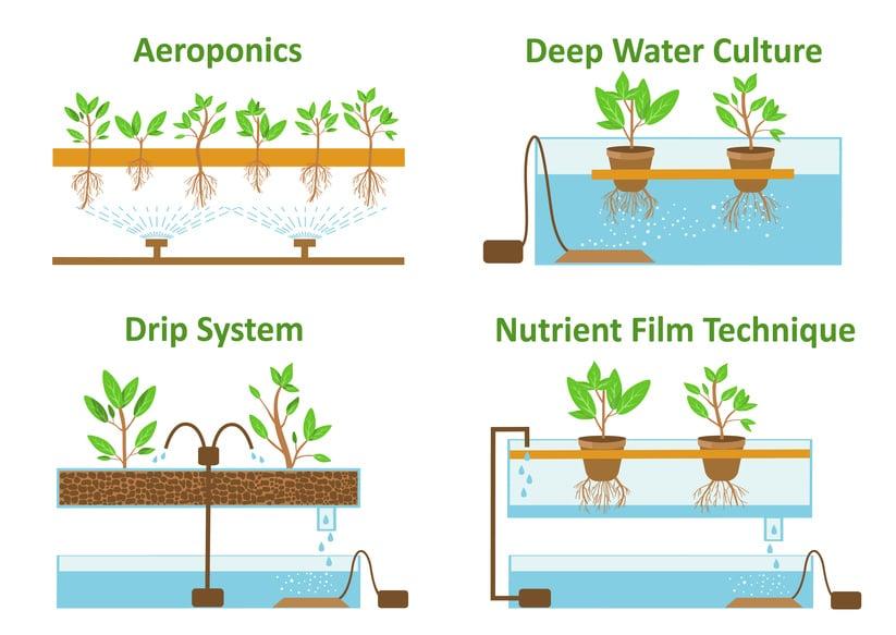 Was ist das Hydrokultur System?